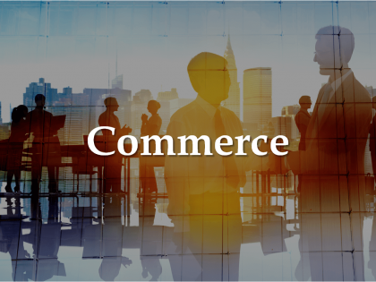 commerce-koumentakis-and-associates-expertise-sectors